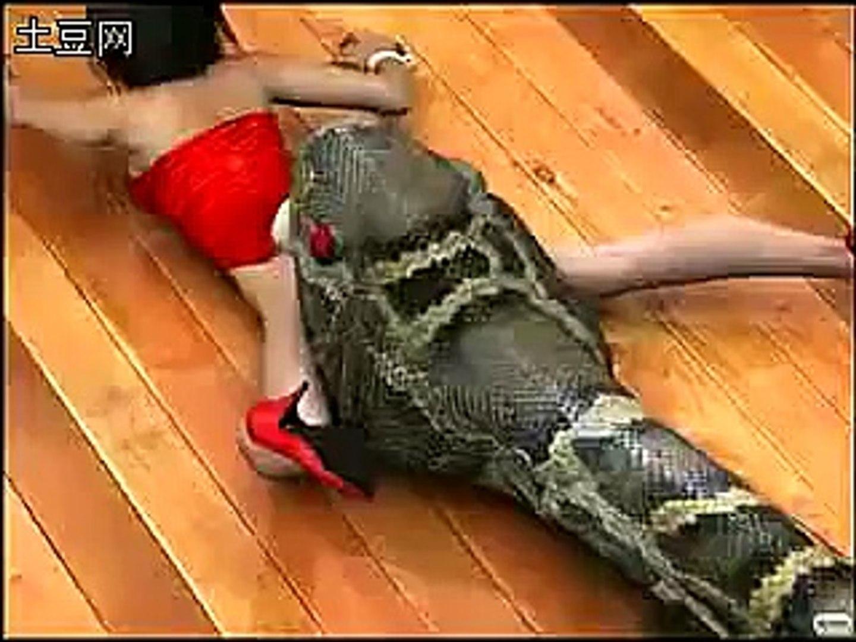 Giant snake eats woman - YouTube