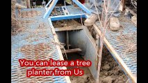 a Planter that plants 5-6-7 ft trees fast