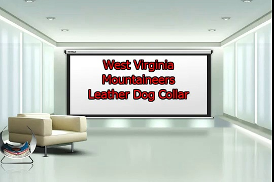 West Virginia Mountaineers Football Leather Dog Collar 1