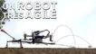 Scamp : ce robot peut voler et grimper aux murs avec aisance