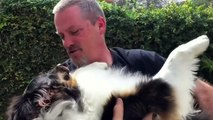 Dog with two noses rescued in California