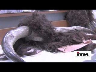 Fabriquer un maquillage - Le Minotaure - Chloé Ribero - école de maquillage ITM Paris 2011