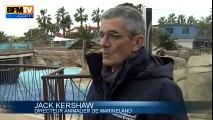 Inondations dans les Alpes-Maritimes : 5 mois après, Marineland rouvre avec une nouvelle formule