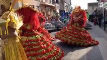 Plan-de-Cuques : le carnaval bat son plein