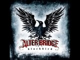 Ties That Bind INSTRUMENTAL (Alter Bridge)