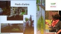 Sols et espaces verts à Créteil (Val-de-Marne)