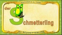 Multipedia der Tiere. Buchstabe S - der Schmetterling