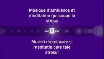 Musique d'ambiance et meditation qui coupe le stress - Muzică de relaxare și meditație care taie stresul ( Partea a II-a )