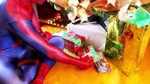 스파이더맨은 실제 생활에서 슈퍼 영화! Minions 및 치고는 괜찮은 놀라움이란 Unboxing