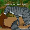 Flipagram - Jay feather x brair light (1)