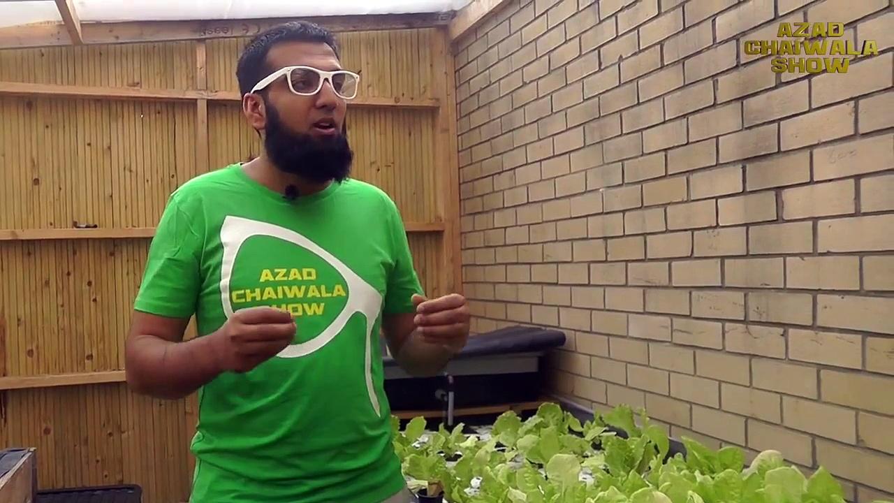 Aquaponics Farming Solution for Pakistan-India (Alternative to Hydroponics).