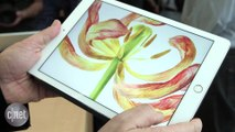 Apple iPad Pro (9.7-inch) Release Date, Price and Specs