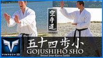 VINRECH 3D Events - KARATE JEAN-KARIM SAHBI - GOJUSHIHO SHO_FINAL