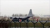 Belgium Air Force Lockheed C-130 Hercules Landings at Brussels Airport [HD]