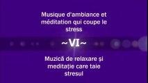 Musique d'ambiance et meditation qui coupe le stress - Muzică de relaxare și meditație care taie stresul ( Partea a VI-a )