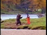 Funny videos - funny clips - bear fight funny as shit