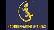 Bearded Dragon Lighting - How Lighting Affects The Health of Your Bearded Dragon