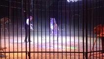 Le cirque Medrano présente son nouveau spectacle