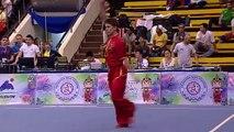 Чемпионат Мира по ушу таолу 2015 г  aрена 2  день 4 14