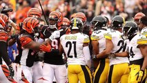 Fight Breaks Out Between Steelers & Bengals Players Before Game