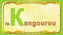Multipédia des animaux. La lettre K le Kangourou