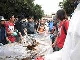 MECHONEO ING. CIVIL MECANICA ULS 2014(22)