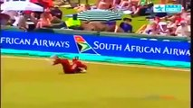 Best Catches in Cricket History! Best Acrobatic Catches! (Please comment the best catch)