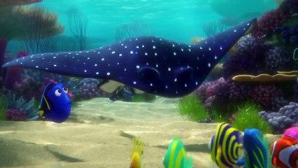 Disney Pixars FINDING DORY New TRAILER