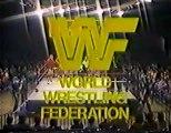 Hulk Hogan & Bob Backlund vs Mr Fuji & Tiger Chung Lee   Championship Wrestling Jan 14th, 1984