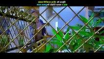 Ye Hawa | New Nepali Hit Lok Dohori 2016 | Tika Pun, Chitiz Sunar | Janata Digital (FULL HD)