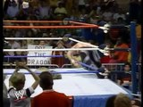 JAKE THE SNAKE ROBERTS VS. RICKY THE DRAGON STEAMBOAT - WWF WWE Wrestling - Sports MMA Mixed Martial Arts Entertainment