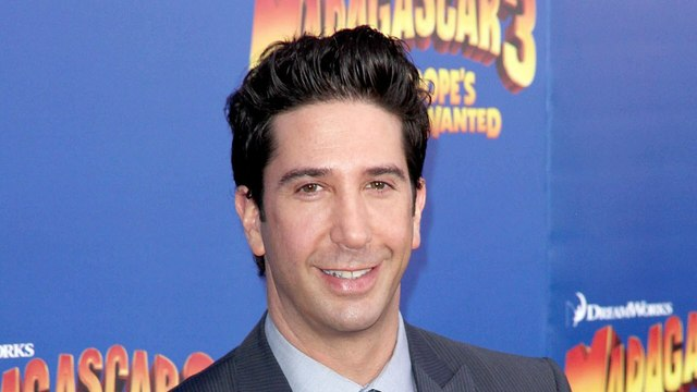 David Schwimmer - I think I'm a very very nice director. Very supportive...