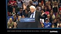 Bernie Sanders interrompu en plein discours par un oiseau, la vidéo insolite !