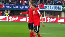 Marc Janko Goal Austria 1 - 0 Albania - 26_03_16