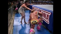 wwe arrior and Slaughter, Savage A Savage Stipulation (WrestleMania 7) arrior and Slaughter, Savage