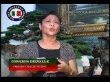 REH Kings Herbal - Ovarian Cancer Patient Testimonial