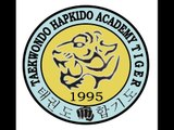 Taekwondo Hapkido Academy Tiger - 20 Anniversary