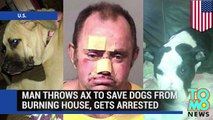 Man saves dogs: Pet owner charged for throwing ax through window to save dogs from blaze - TomoNews