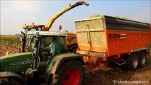 New Holland FR 9080 mais hakselen 2015 - Vergauwe Franky