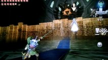 Zelda Twilight Princess - Link vs Zelda