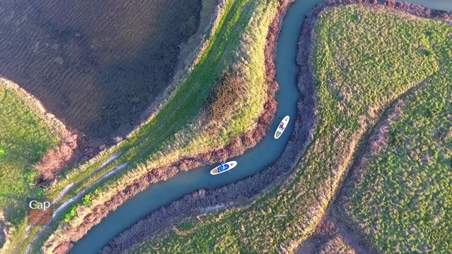 Cap Sud Ouest: les marais de l'île d'Oléron.
