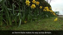 Storm Katie brings winds of 105mph and even bends a crane