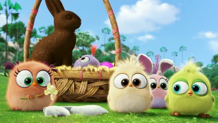 The HATCHLINGS The Movie - ANGRY BIRDS