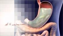 Sharab buraiyon ki maan شراب برایئوں کی ماں P-1 Dr. NA Mazhar Dr alternative medicine - YouTube