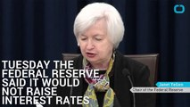 The Interest Rate And Why The Fed Didn't Raise Rates