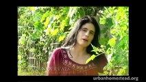 Homegrown Revolution (Award winning short-film 2009)- The Urban Homestead, Dervaes  The Short Movie