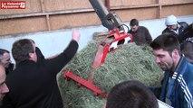 Séchage en grange : le développement continue