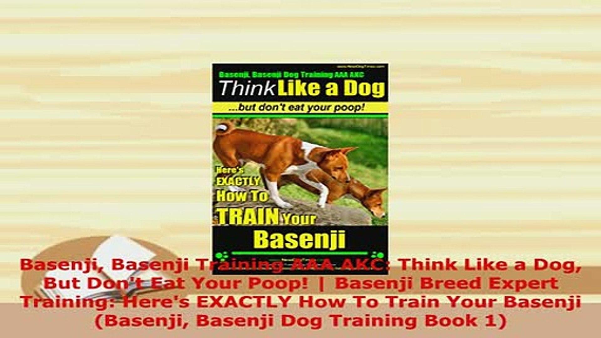 Pdf Basenji Training Aaa Akc