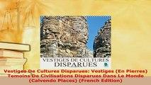 PDF  Vestiges De Cultures Disparues Vestiges En Pierres Temoins De Civilisations Disparues Read Full Ebook