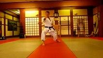 Heian Godan Shotokan KArate Kata